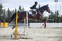 young rider jumping with horse over obstacle at competition outdoors