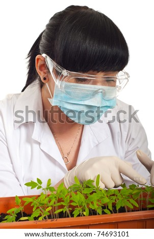 Young scientist woman examine new tomatos leaf in  a pot isolated on white background