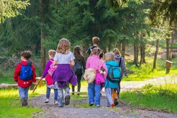Young small caucasian kids children group walk forest wood park path tree summer back view kindergarten outdoor