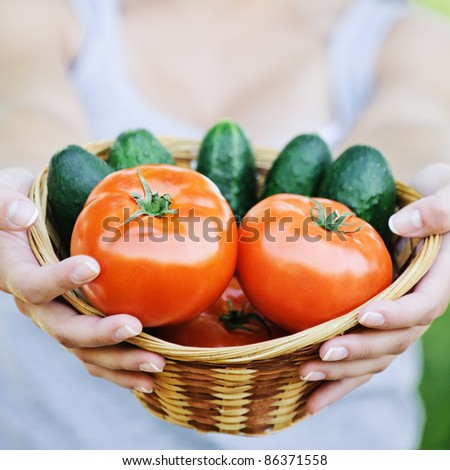 Young smiling woman holding basket full of ripe vegetables at summer green park.