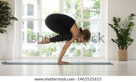 Young sporty slim woman practising yoga inside of light modern room with greenery sunny morning view through window, female doing Crane exercise or Bakasana pose, improving strong core muscles concept