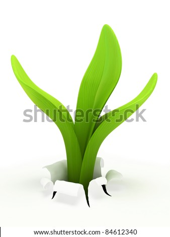 Young sprout isolated on white background 3D rendering - stock photo