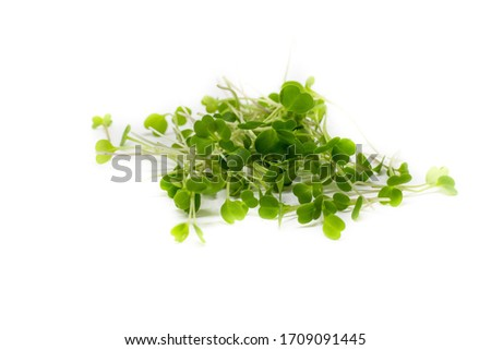 Young sprout microgreen isolated on white background. Microgreen arugula sprouts. Healthy eating concept. Clipping path.Top view Foto stock ©