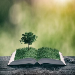 Young tree on a green grass on the pages of an open magical book. Nature spring background. Ecology and education concept. Vintage filter stylization.