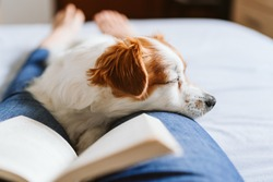 young woman and dog at home resting on bed. Love, togetherness and pets indoors. woman reading a book.
