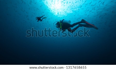 Young woman and man scuba divers exploring. Underwater sport and leasure activities. #1317658655
