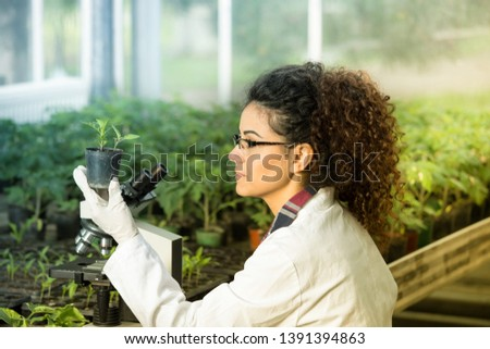 Young woman biologist holding flower pot with sprout and checking it growth beside microscope in green house. Plant protection concept Photo stock ©