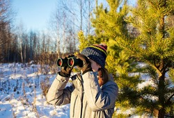 Young woman birdwatcher in winter clothes and knitted scarf looking through binoculars in winter snowy pine forest. Ecology and ornithological research, birdwatching