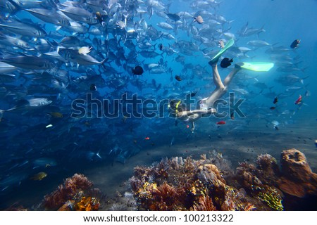Young woman diving on a breath hold and fining near huge school of Jack fish