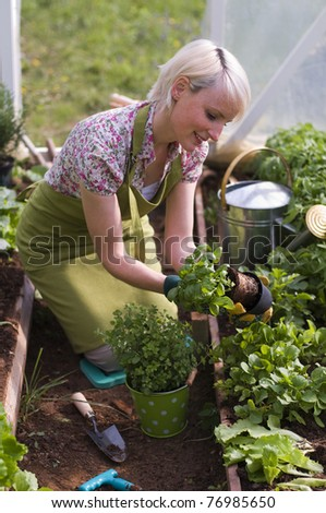 Young woman gardening in glasshouse close up