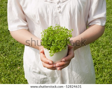 Young woman holding potted plant - stock photo