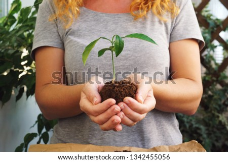 Young girl hold growing plants in hands Images and Stock