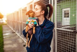 Young woman in dog shelter adopting a dog.