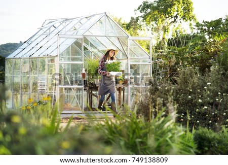 Young woman in the glass greenhouse