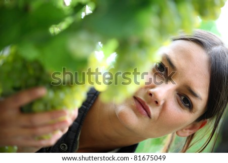 Young woman inspecting grape harvest