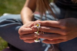 Young woman making a daisy chain sitting on grass, close up of hands.