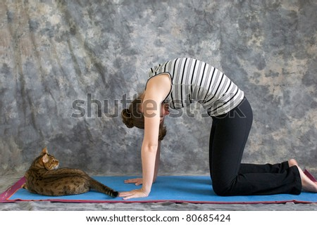 Young woman on yoga mat in  Yoga posture Marjaryasana or cat pose against a grey background in profile, facing left lit by diffused sunlight. A pet bengal cat is laying on the mat watching her. - stock photo