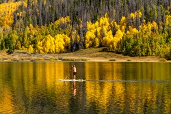 Young woman paddle boarding on mountain lake on warm fall day with yellow Aspen trees reflecting in water