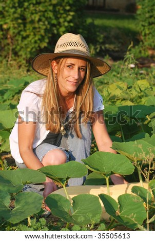 Young woman picking a banana squash from her victory garden.