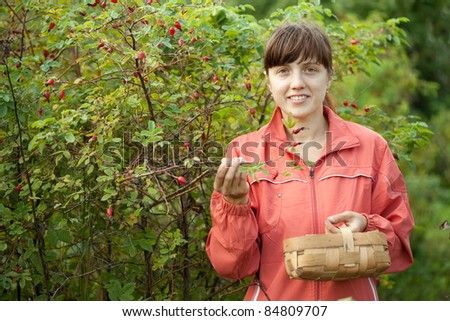 Young woman picking brier in the plant