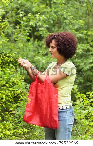 Young woman picking fir buds