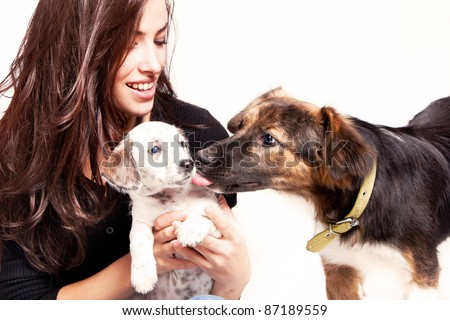 young woman play with two dogs, studio shot