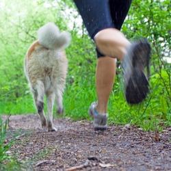Young woman running with akita dog in summer forest, motion blur