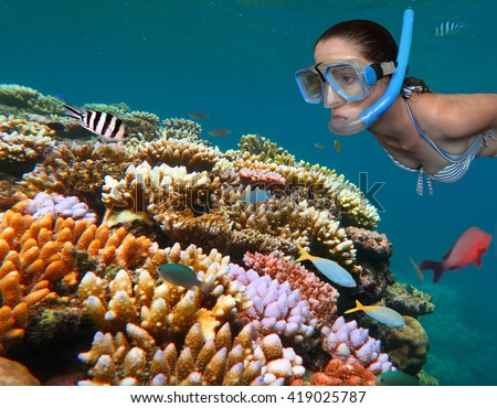 Young woman snorkeling free dive in the Great Barrier Reef in the tropical north of Queensland, Australia.Real people .Copy space