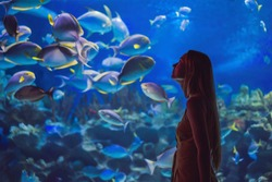 Young woman touches a stingray fish in an oceanarium tunnel