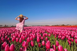 Young woman tourist in pink dress and straw hat standing in blooming tulip field. Spring time