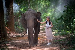 Young woman tourist is walking with cute elephant that the local villagers feeds them for show and tourist can take pictures with them when come to visit the elephants at the village.