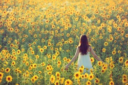 Young woman walking away in a field of sunflowers, view from her back; copy space