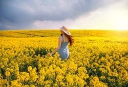 Young woman walking flowering field, turned away, gently touch yellow flowers. Brunette girl enjoys spring aromas, harmony. Backdrop dark clouds blue sky. Long hair fluttering wind. Denim sundress hat