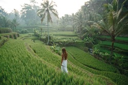 Young woman walking on rice field Tegalalang, Ubud, tropical island of Bali, Indonesia. Tourist girl touring Tegalalang rice fields , back view