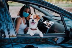 young woman wearing protective mask in a car. cute jack russell dog besides. Selective Focus on dog. Travel and new normal concept