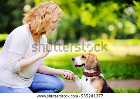 young woman with beagle dog in...