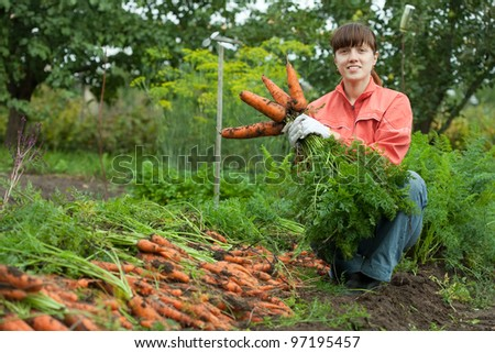 young woman with carrot harvest in field