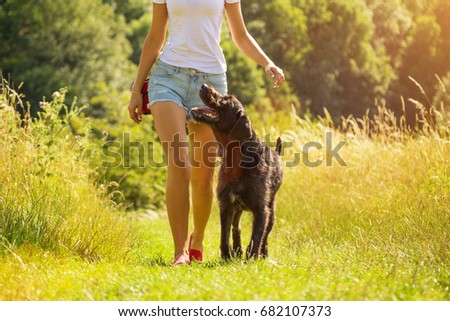Stock Photo Young woman with her dog walking outdoor during summer day.