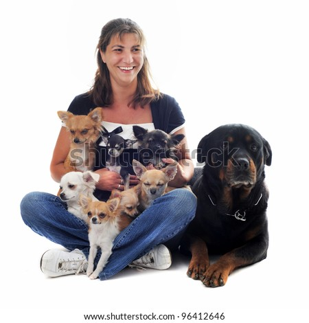 young woman with seven chihuahuas and one rottweiler in front of white background