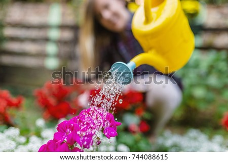 Young woman working in the garden. watering flowers in garden centre. Woman Watering Flower Garden Plants. woman taking care of her plants ( and watering them ) in her garden.