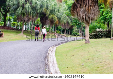 Young women from 20 to 25 years old walked in park for a healthy life on a paved and curved road surrounded by nature