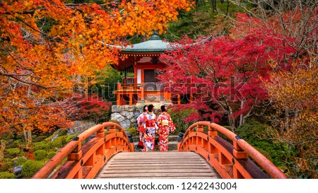 Young women wearing traditional Japanese Yukata at Daigo-ji temple with colorful red maple trees in autumn Stock photo ©