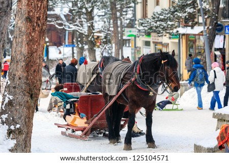 ZAKOPANE - JANUARY 07: Horse harnessed to sled on the street Krupowki in Zakopane in Poland on January 07, 2012. Krupowki is the main shopping area and pedestrian promenade in the center of Zakopane