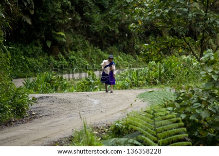 ZAMORA REGION,ZAMORA, ECUADOR, Circa April 2013. Zamora Ecuador Circa April 2013. Woman walks along country road  pack on her back. To take her wares to market she  walks many KM to reach a bus stop.