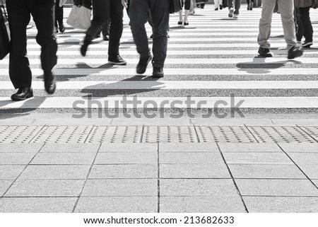 zebra crossing #213682633