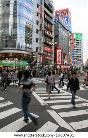 Zebra Crossing - Shinjuku, Tokyo, Japan