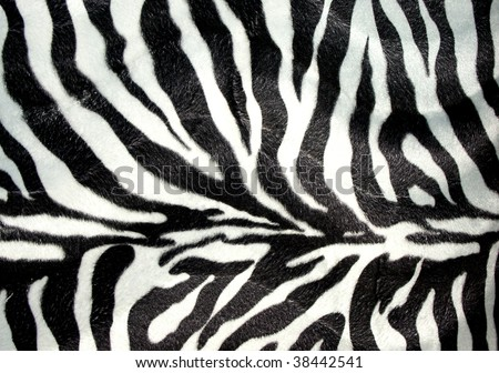 Zebra print for background