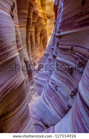 Zebra Slot Canyon, Grand Staircase Escalante National Monument, Utah