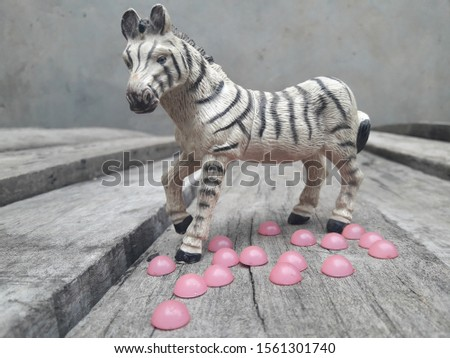 Zebra Stands on Wood with pink pearls #1561301740