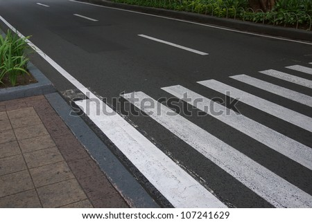 zebra traffic walk way